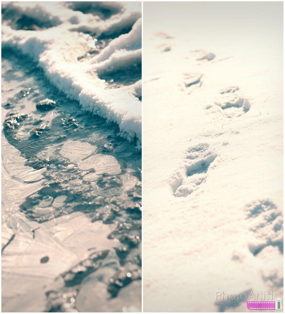 Collage5 in Rodelspaß